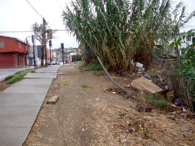 Inescrupulosos arrojan basura a pocos metros de entrada de colegio